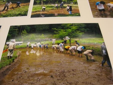 堀之内寺沢公園の田植え体験